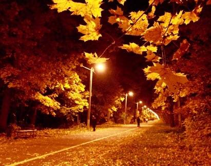 фото осень спокойной ночи